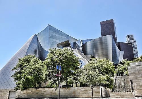 Chuck Kuhn - Gehry VI
