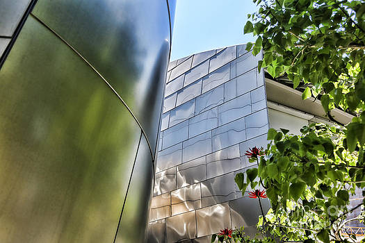 Chuck Kuhn - Gehry VIII