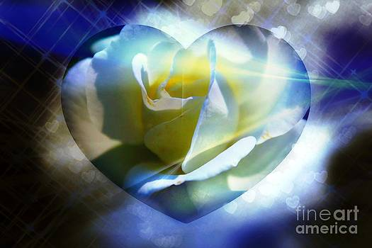 Gentle Touch Of Light by Judy Palkimas