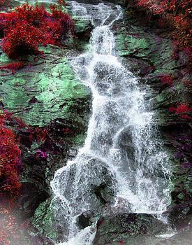 Georgia Falls by Joseph Tese