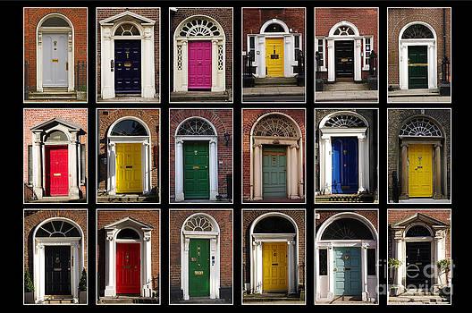 Georgian doors of Dublin by Giuseppe Ridino