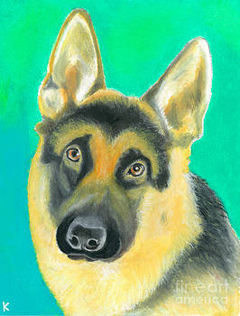 German Shepherd by Aaron Koster