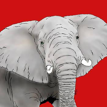 Gertrude the Elephant by Tony Clark