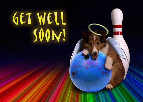 Jeanette K - Get Well Soon Angel Sheltie Puppy