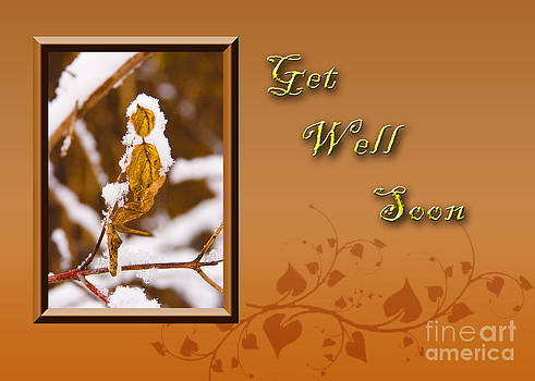Jeanette K - Get Well Soon Leaf
