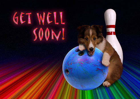Jeanette K - Get Well Soon Sheltie Puppy