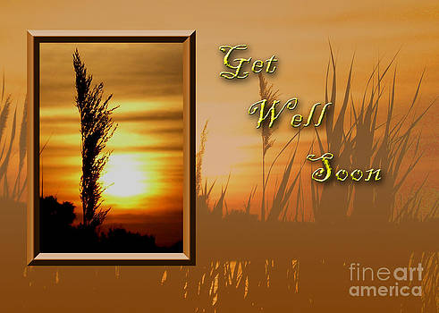 Jeanette K - Get Well Soon Sunset