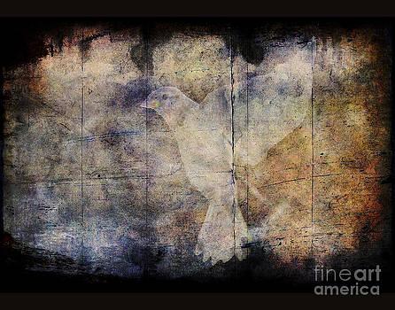 Ghost bird by Jim Wright