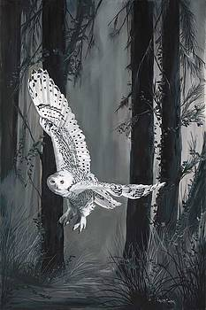 Ghost in Torrit Woods by Laura Curtin