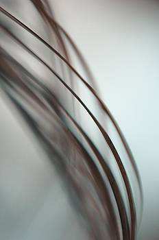 Jenny Rainbow - Ghost Leaves