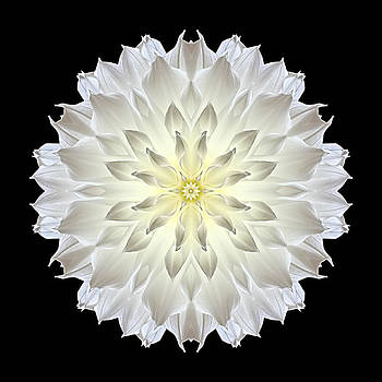 Giant White Dahlia Flower Mandala by David J Bookbinder