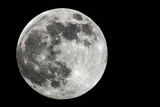 Gigantic Moon by Tim Ai