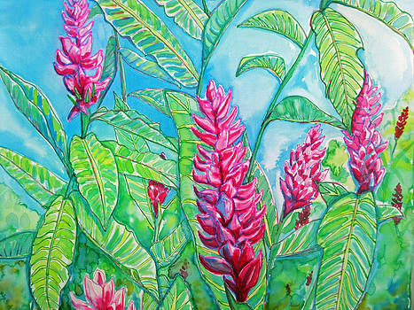 Ginger Jungle by Kelly     ZumBerge