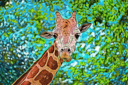 Giraffe by Kyle Ferguson