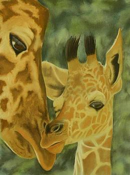 Giraffes by Charles Hubbard