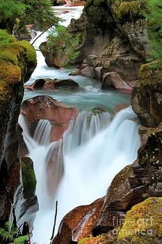 Adam Jewell - Glacier Avalanche Creek