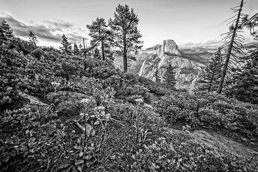 Glacier Point Sunset Black and W by Bill Boehm