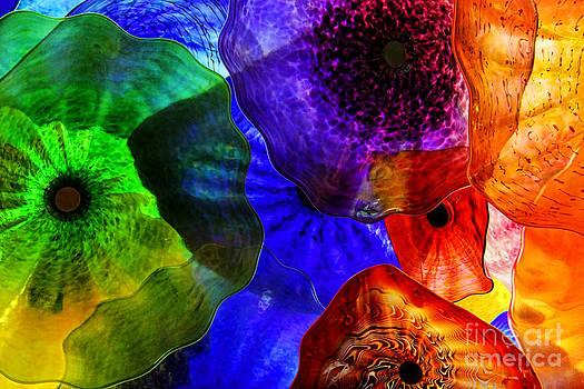 Glass Palette by Mariola Bitner