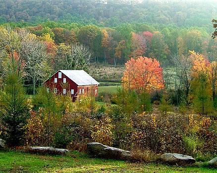 Glatfelter Tree Farm  by L Granville Laird