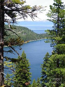 Glimpse of Lake Tahoe by Charleen Treasures