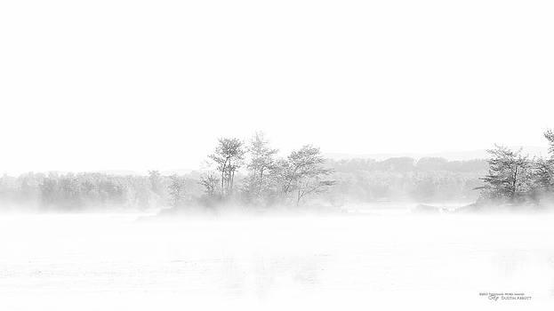 Glimpses by Dustin Abbott