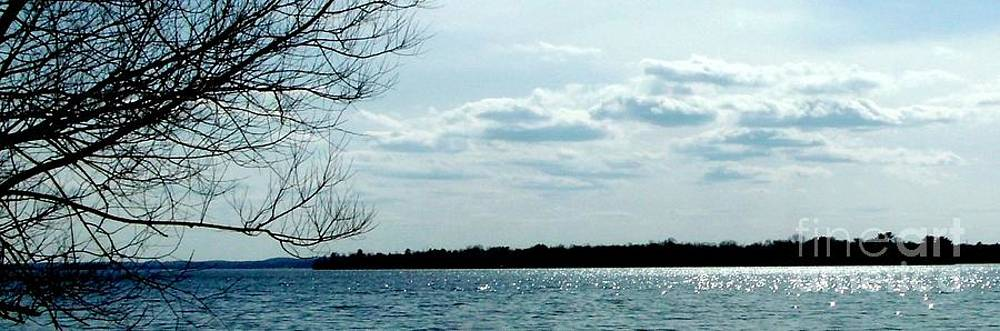 Gail Matthews - Glistening water near the Island