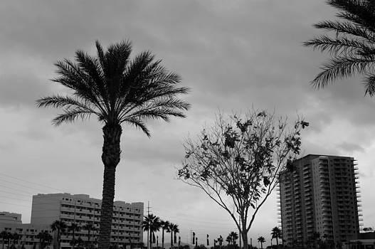 Gloom - Las Vegas by Valerie Beasley