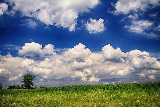 Glorious Sky by Victoria Winningham
