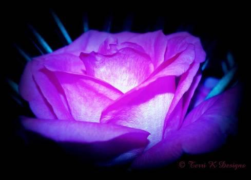 Glowing Rose by Terri K Designs
