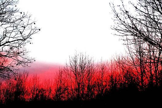 Glowing sunset by Gary Pavlosky