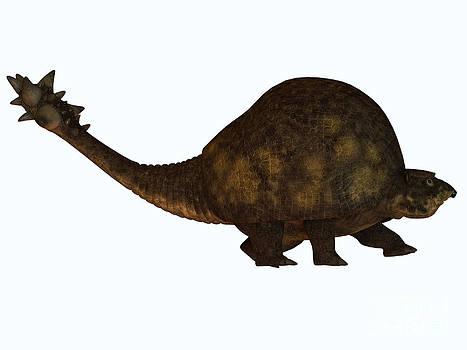 Corey Ford - Glyptodon on White