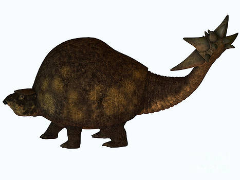 Corey Ford - Glyptodon Profile