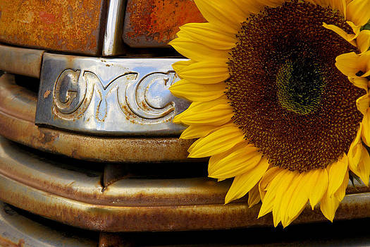 GMC Sunflower by Steven Bateson