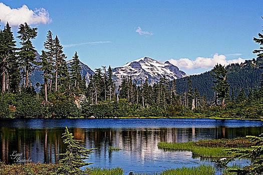 Goat Mountain by Lynn Bawden