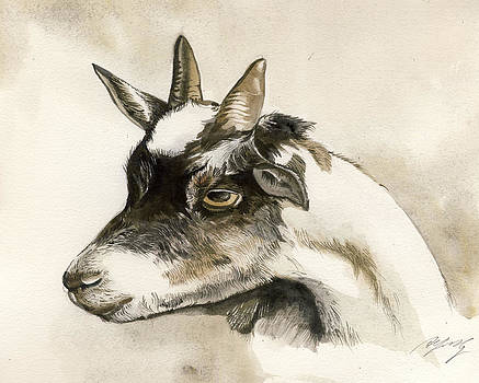 Alfred Ng - goat watercolor