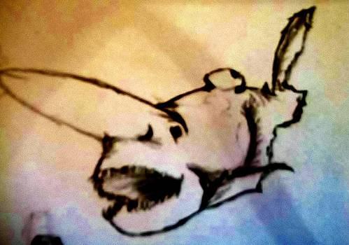 Goblin Shark by Maxine Meyers