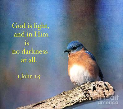 God Is Light by Olivia Hardwicke