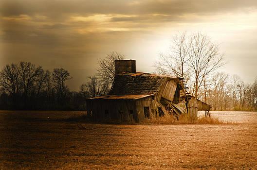 Randall Branham - Going Down Barns