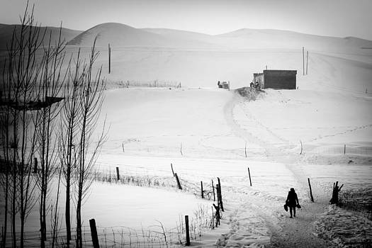 Going Home by Stephanus Le Roux
