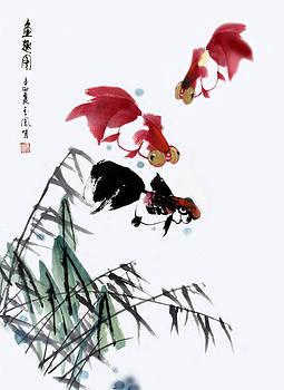 Gold Fish by Yufeng Wang