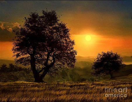 Gold Light by Robert Foster