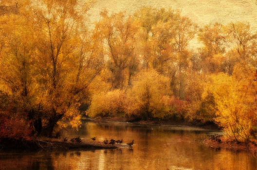 Gold on the Pond by Larry Goss