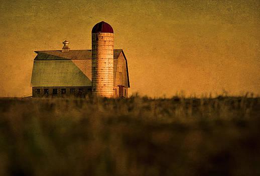 Golden Barn by Eleanor Ivins