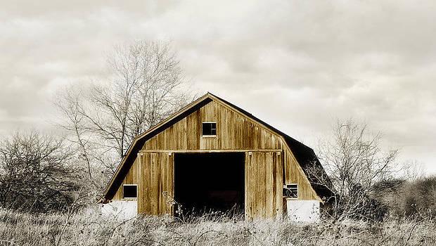 Golden Barn by Laura Schramm-Behnke