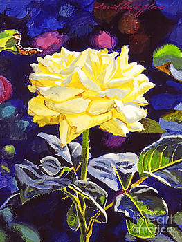 David Lloyd Glover - Golden Beauty