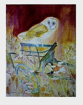 Golden Brown Owls Florist by Blossom Hackett