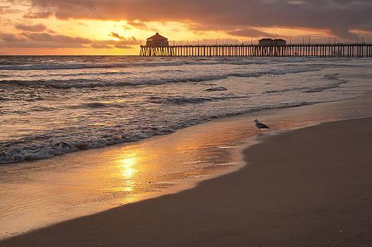 Golden Coast by Tuan Le