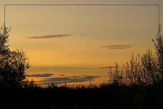 Liz  Alderdice - Golden Daybreak