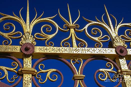 Patricia Hofmeester - Golden fence