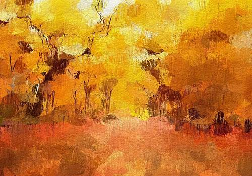 Stefan Kuhn - Golden Forest